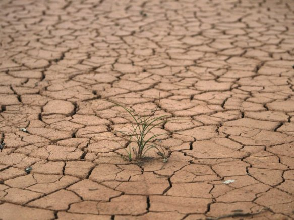 the-soil-on-an-old-rare-earths-site-lies-parched-and-cracked